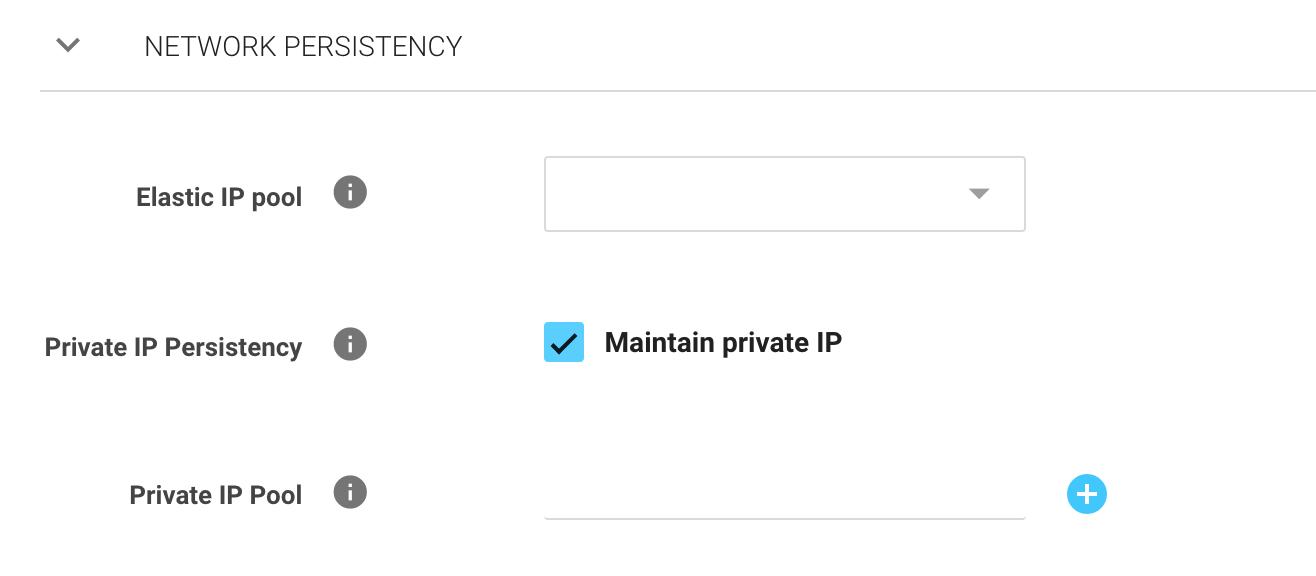 Network Persistency - Spotinst API